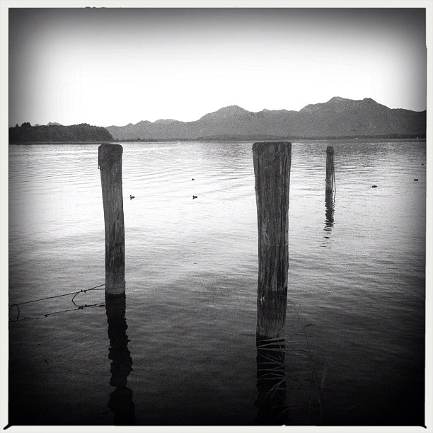 am Chiemsee X